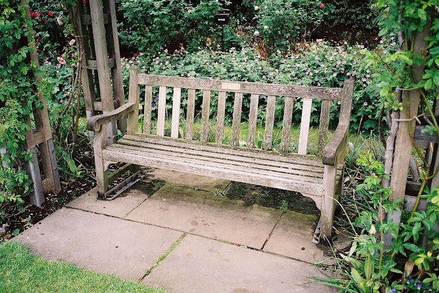 London bench Rose Garden Regent's Park