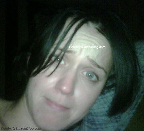 Katy Perry Makeup on Katy Perry No Makeup  Hollywood Images Hollywood Pictures Download