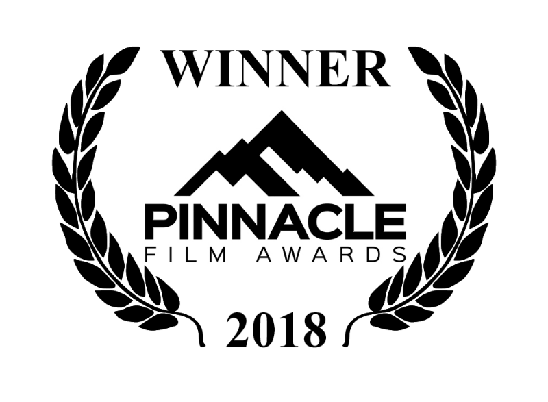 Joseph Plummer Wins Silver Award For Best Actor At Pinnacle Film Awards In Los Angeles