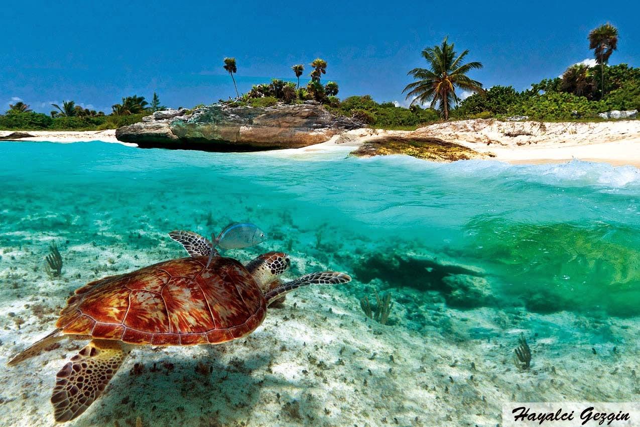 Adalarda gezilecek yerler