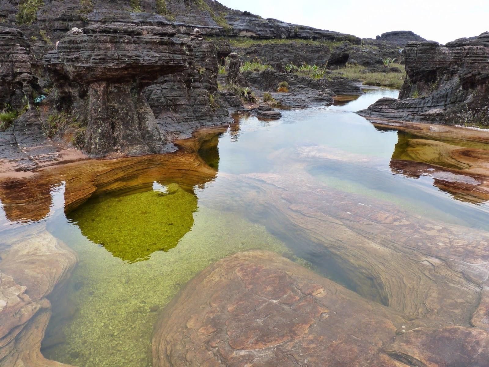 Piscinas Naturais no Monte Roraima
