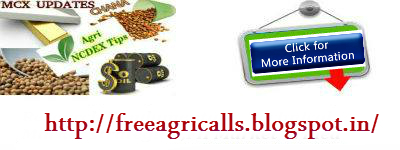 Agri Commodity tips , Agri Tips , turmeric tips , chana tips ,  Indian share market , Mcx Tips Services