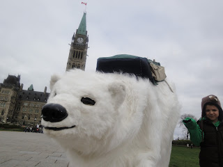 Image of the polar bear mascot