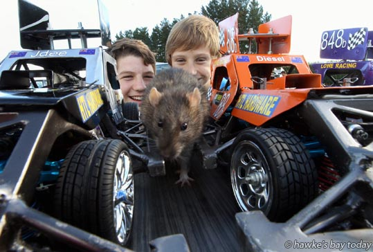 L-R: Tyler Crosby, Napier, Ballsack, a friend's rat, Marcus Lowe, Taradale, with remote-controlled stockcars - Meeanee Speedway Swapmeet, Hot Rod and Classic Car Display, Marineland Street Rods - at Meeanee Speedway, Meeanee, Napier photograph