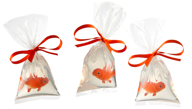 Coco designs these are a few of my favorite things seven for Fish in a bag soap