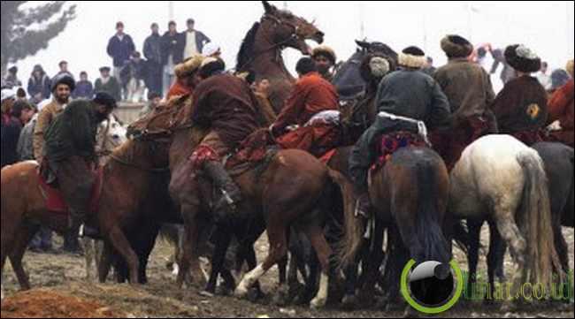 Perlombaan Buzkashi di Taliban