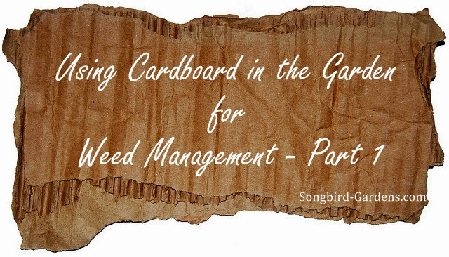 Using Cardboard in the Garden for Weed Management -- Part 1