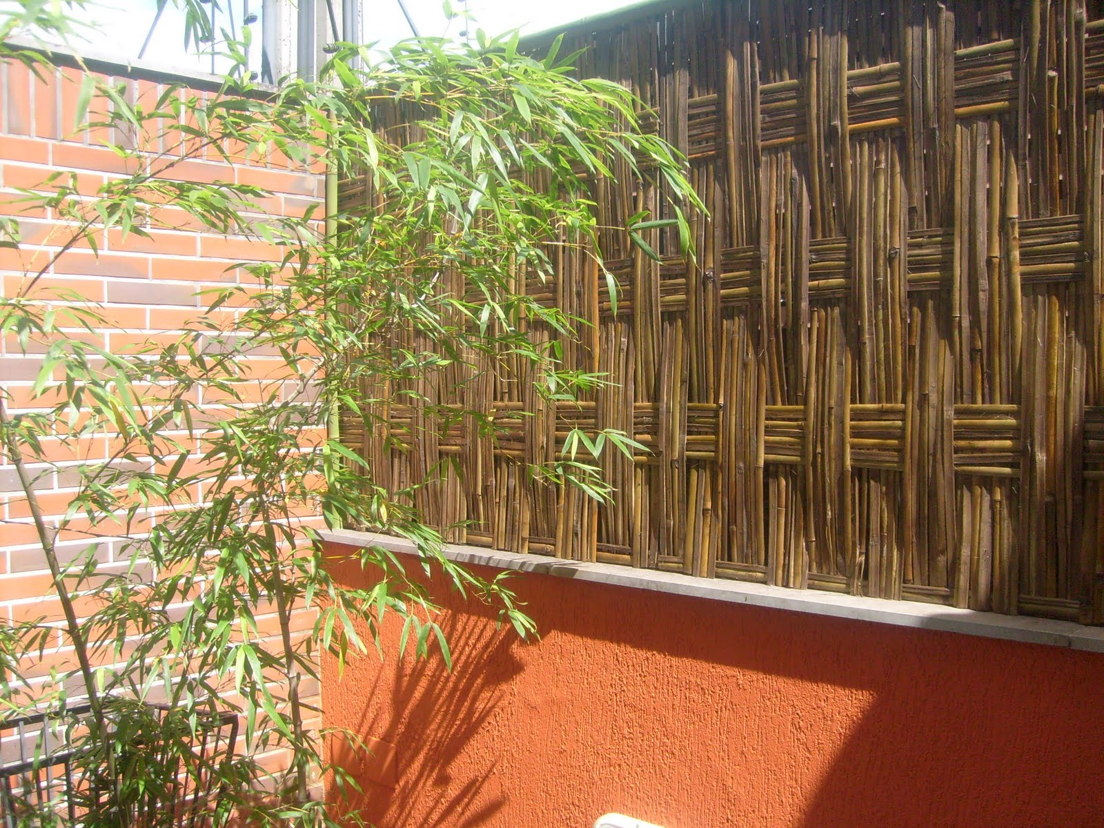 cerca para jardim vertical:Cercas de Bambu