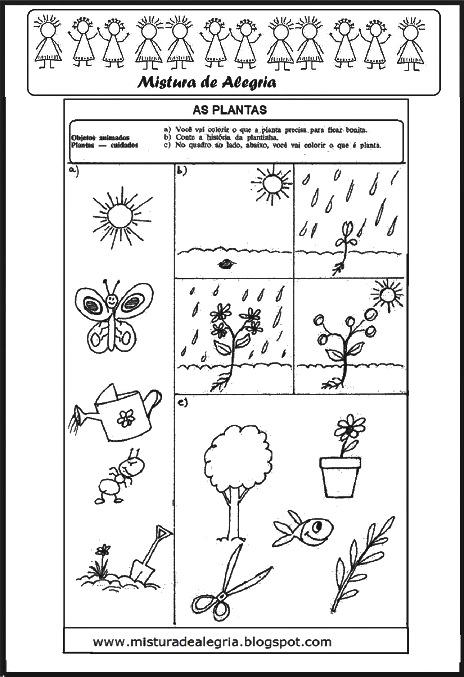atividades alfabetizacao jardim horta pomar:ESTUDO SOBRE AS PLANTAS, MEIO AMBIENTE E PRIMAVERA, PARTES DA PLANTA