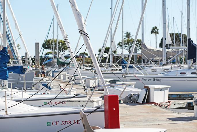 san-diego-yacht-club-sailboats
