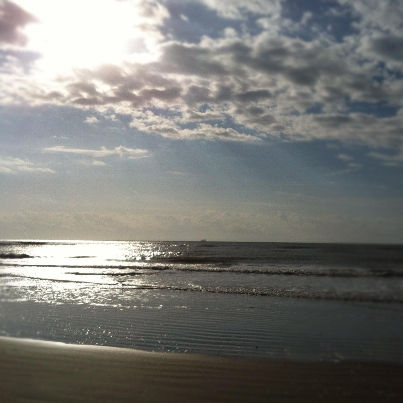 Carys Arms Beach Huts