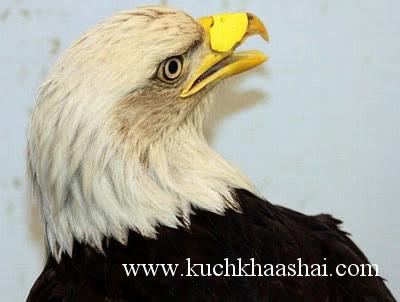 www.kuchkhaashai.com