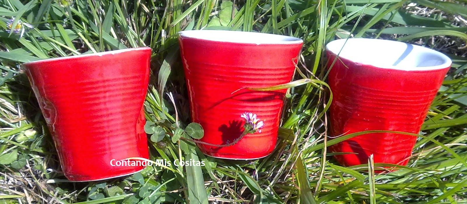 Tazas de cerámica bottega verde