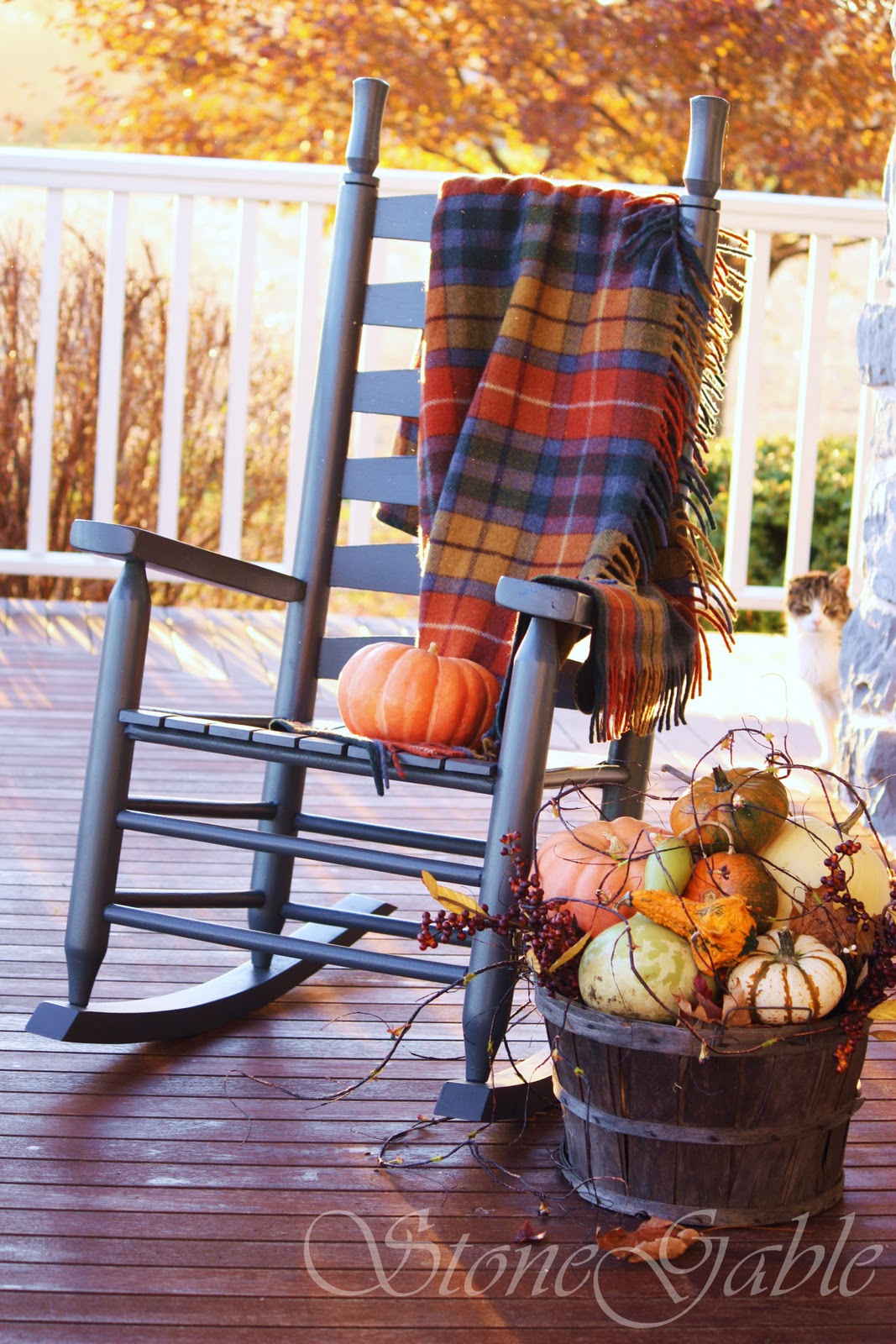 TARTANS ON THE PORCH