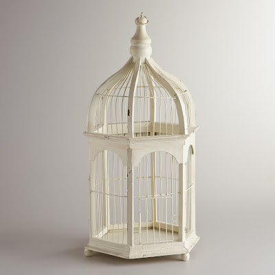 Birdcage Decor Tips and Tricks