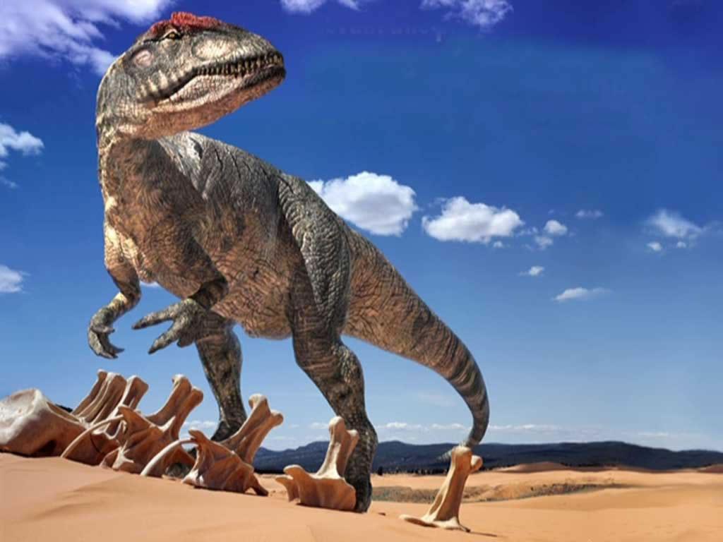 Sabías que…los Dinosaurios?