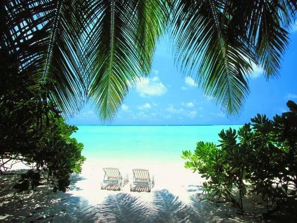 СПЕЦПРЕДЛОЖЕНИЕ - МАЛЬДИВЫ, Ари Атолл, Holiday-Island Resort and Spa, 4* ($203 в сутки с перелетом)