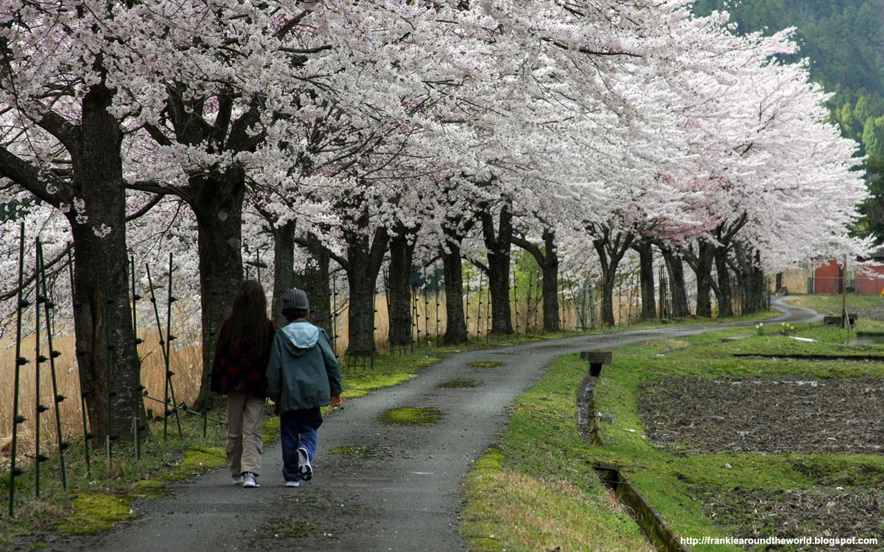 Visiter Okinawa Japon : Fond d'écran japonais gratuit