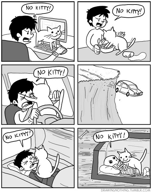 imágenes graciosas - ¡No Kitty!