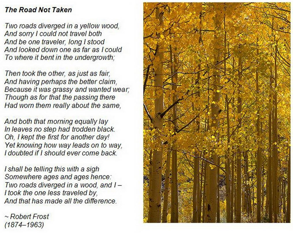 a decision on which path to take in the road not taken by robert frost