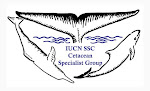 I am a member of IUCN SSC Cetacean Specialist Group