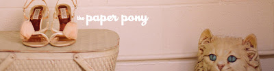 the paper pony