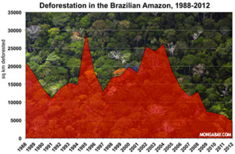 deforestation solutions