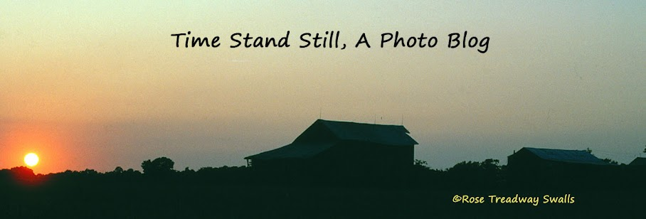Time Stand Still, a photo blog