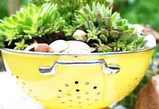 Upcycling: Mini Steingarten aus altem Küchensieb