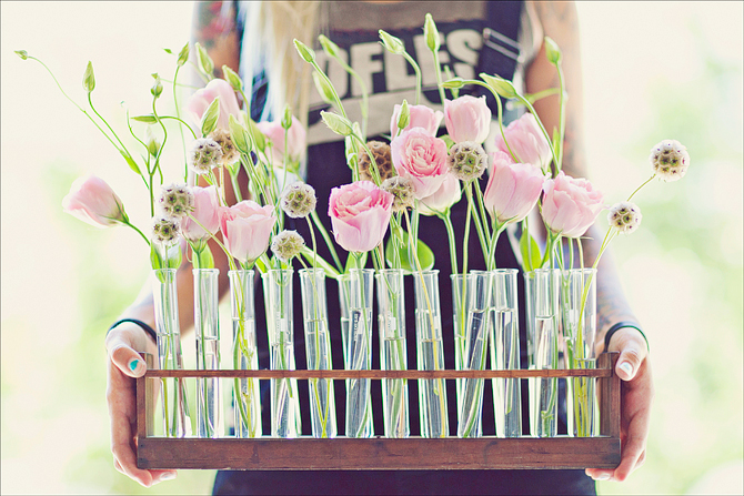 Diy home test tube vasesbraldey bradlwy java script for for Test tube flower vase rack