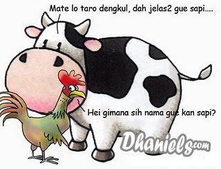 artikel-populer.blogspot.com - Humor Pagi - Curhatan Ayam Dan Sapi Di Pagi Hari