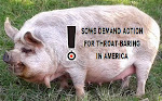 SOWS DEMAND ACTION