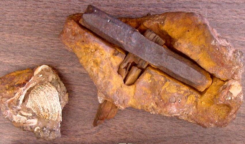 El-Martillo-de-Kingoodie-Encontrado-en-Escocia.