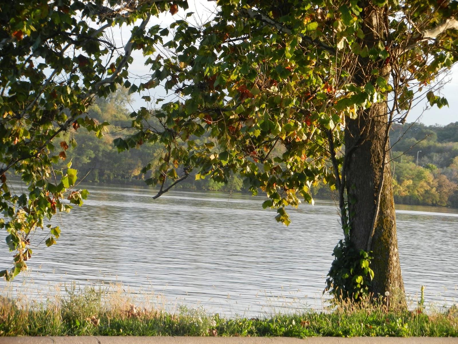 riverfront leclaire illinois