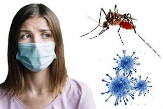Casos de dengue aumentam em meio à pandemia de Covid-19