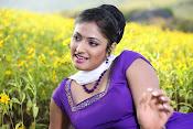 Hari priya photo shoot among yellow folwers-thumbnail-5