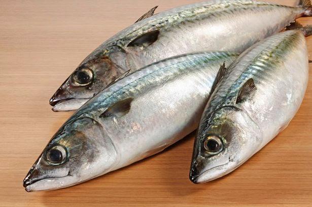 Petua Mengekalkan Kesegaran Ikan