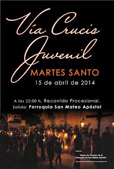 Album de fotos del Vía Crucis juvenil 2014