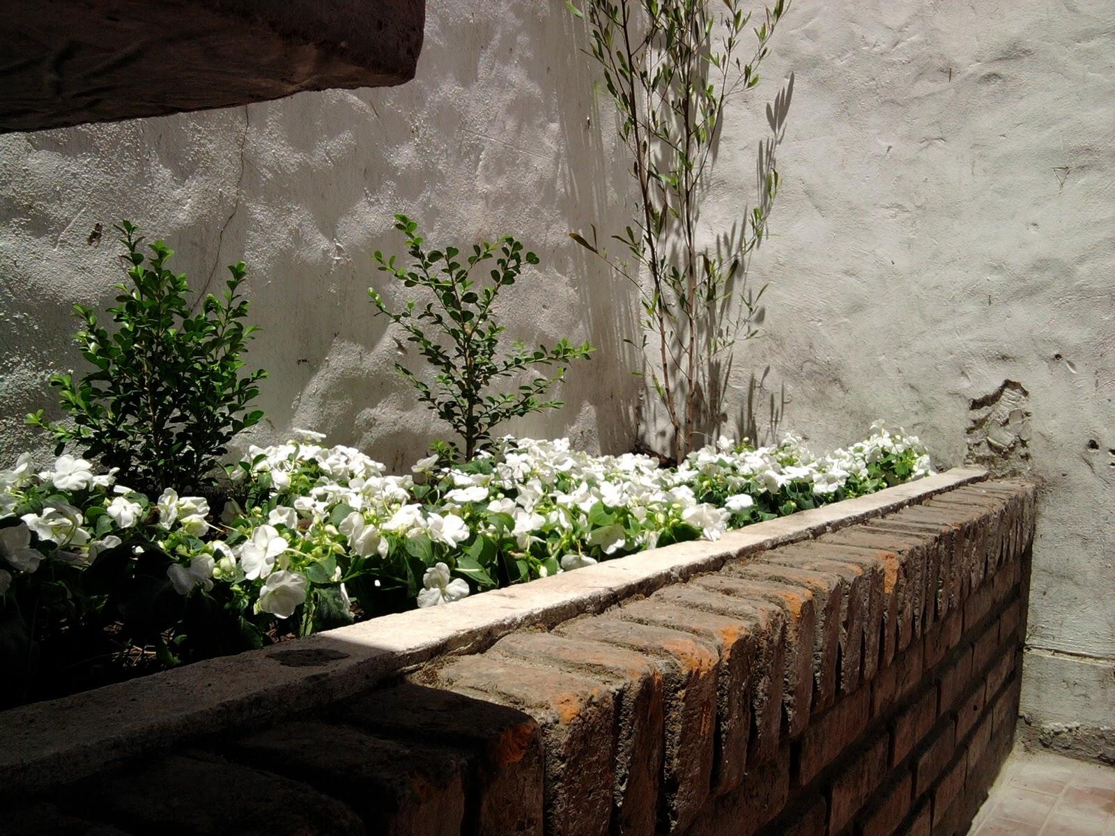 T cnico en jardiner a dise o en cantero exterior for Tecnico en jardineria