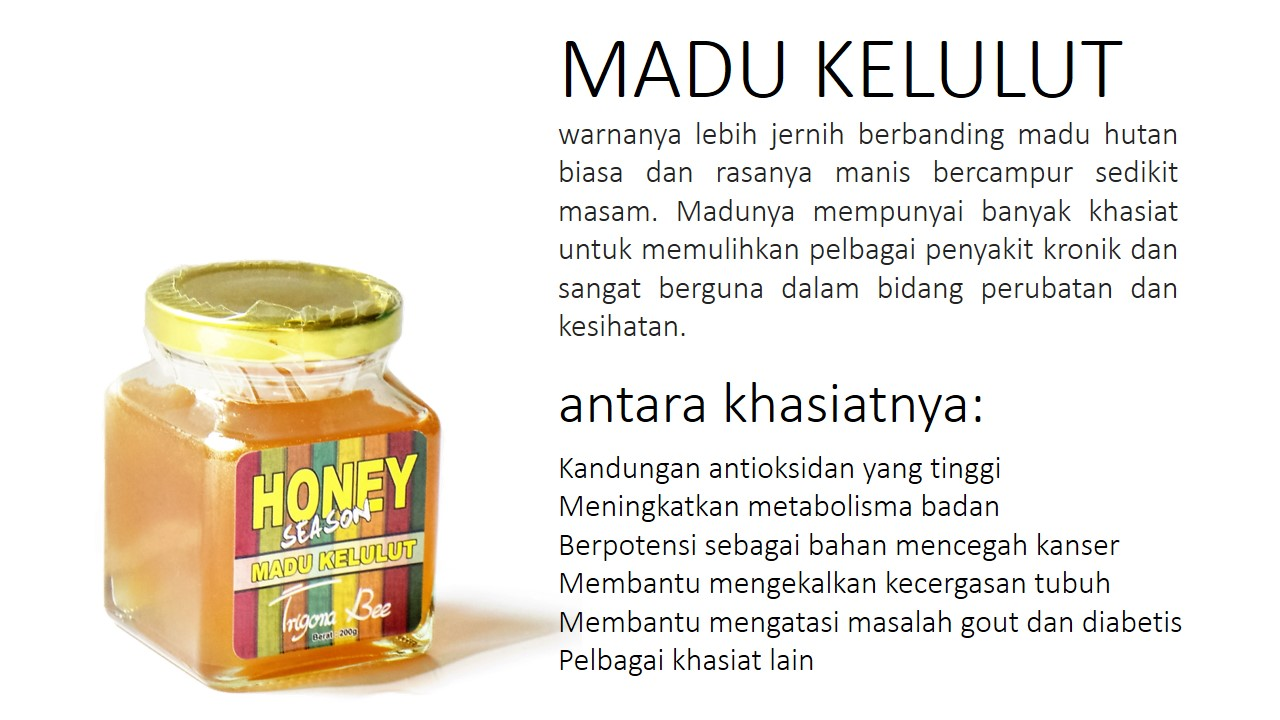 Madu Kelulut Honey Season