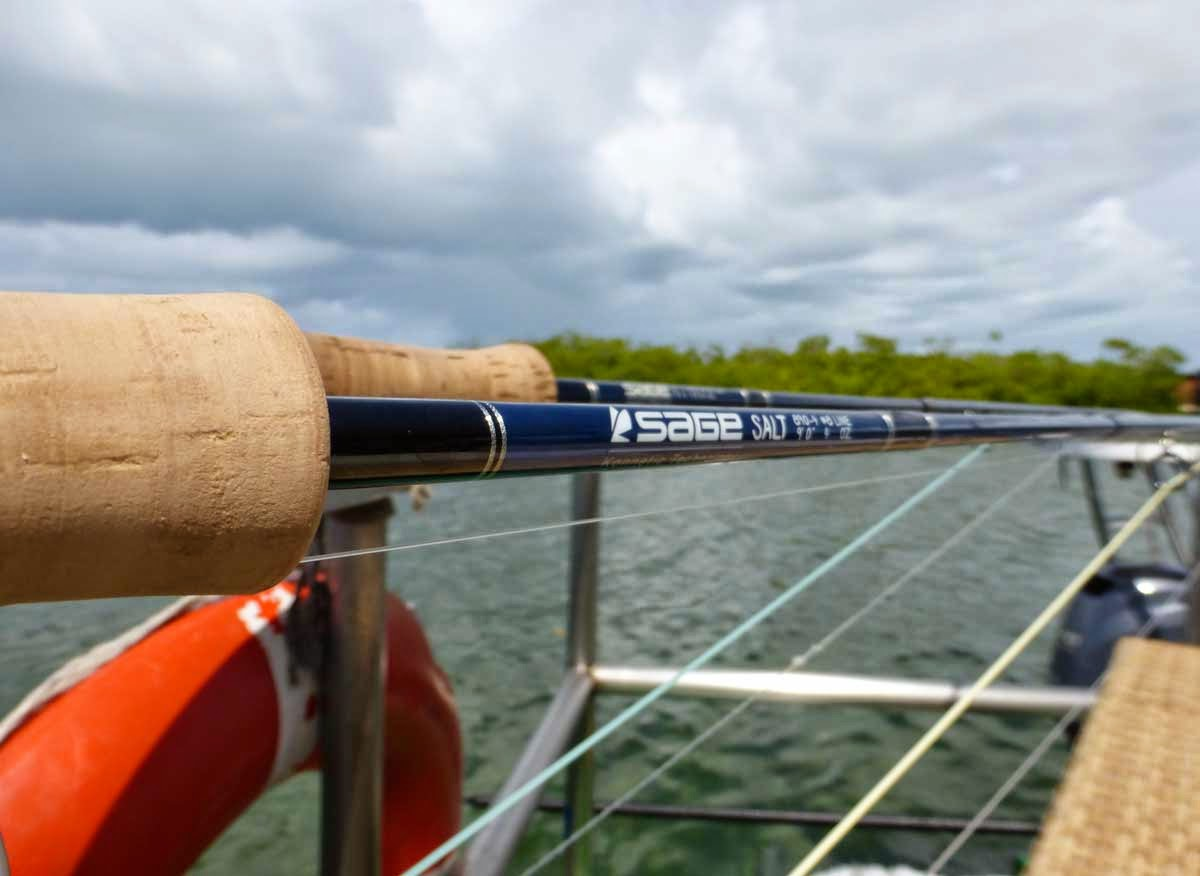 Blog chicago fly fishing outfitters new sage for Chicago fly fishing outfitters