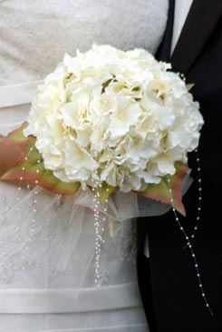 You searched for label matrimoni vintage matrimonio creativo for Camelie bianche