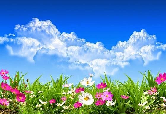 Paisaje en primavera