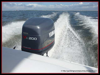 rental boat on Tampa Bay, Florida