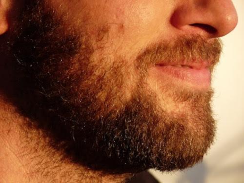 Barba é tão suja quanto vaso sanitário