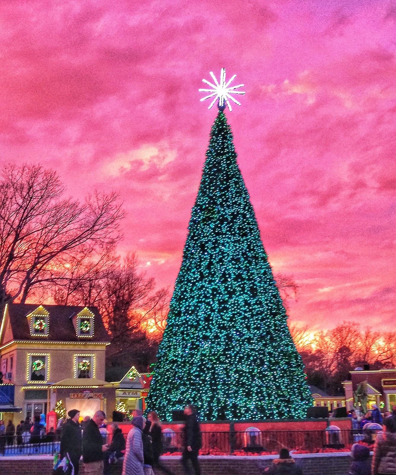 Travel, Run, Live: Santa Run 5k recap - Six Flags Holiday in the Park