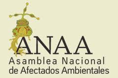 Asamblea Nacional de Afectados Ambientales