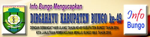 www.infobungo.com