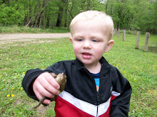 Jeremy Frog Catching