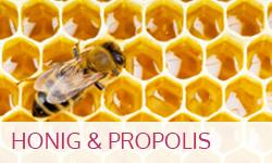 Honig und Propolis